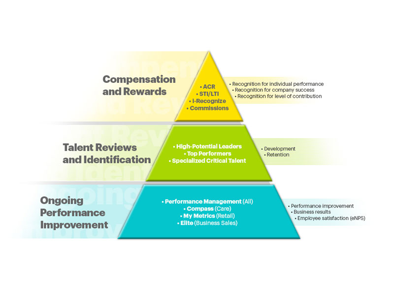 knowledge and skills framework essay The national framework for the assessment of social workers at the end of  knowledge and skills statement for child and family social work and the relevant.